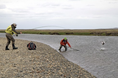 Rio Grande TDF Fishing Report