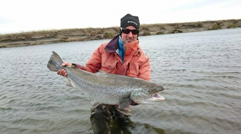 24lb Sea Run Brown Argentina